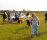 Hofstra Awarded Grant to Clean Up Local Salt Marsh after Superstorm Sandy