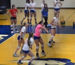 Hofstra Hosts Spike Out Volleyball Tournament