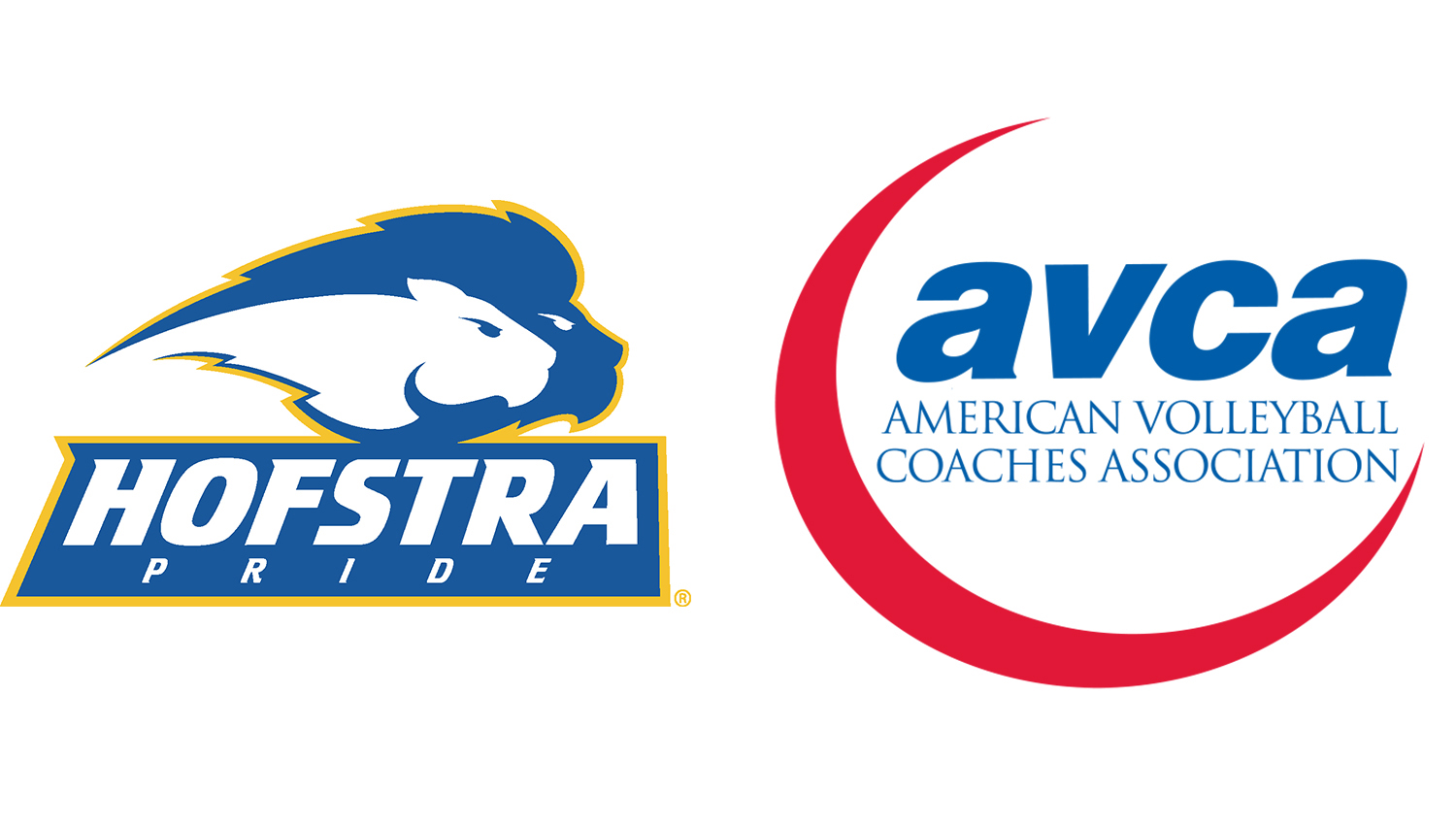 Hofstra Receives AVCA Team Academic Award