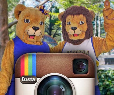 Hofstra on Instagram