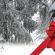 WinterNewsSite