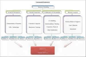 HECIS Program Conceptual Framework