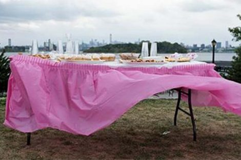 Susannah Ray, Dessert Table, Barretto Point Park, The Bronx, 2015