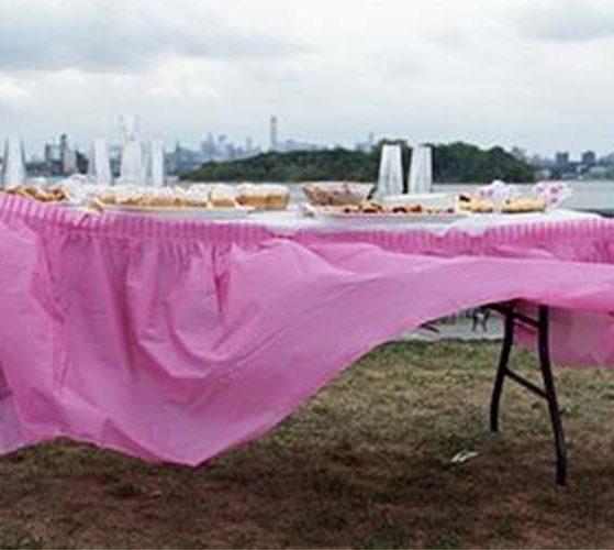 Susannah Ray, Dessert Table, Barretto Point Park, The Bronx, 2015