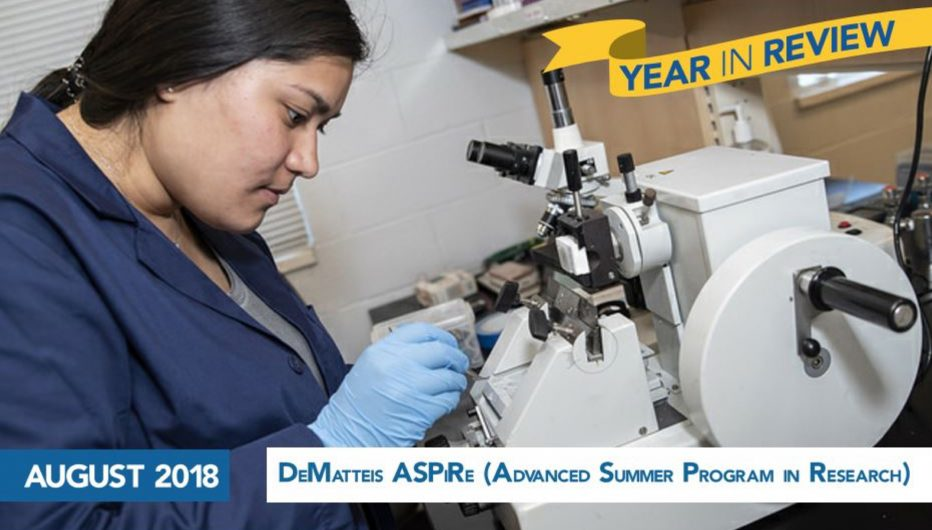 DeMatteis ASPiRe (Advanced Summer Program in Research)