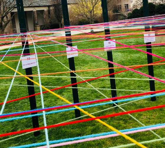 Photo of UNITY project at Hofstra, pieces of yarn intertwined across the quad.