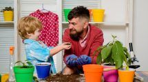 Family garden. Father and son grow flowers. Family hobby.
